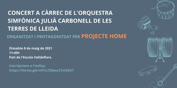 Concert a càrrec de l'Orquestra Simfònica Julià Carbonell de les Terres de Lleida