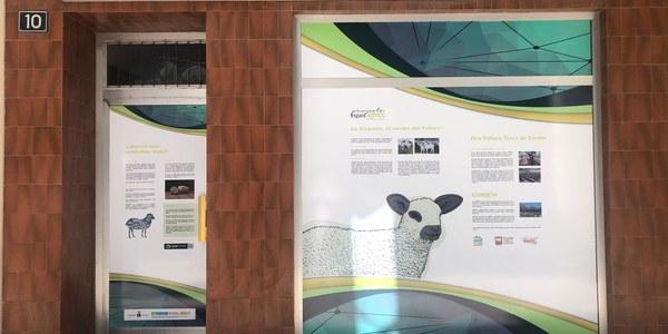 Intervenció de l'Ajuntament de Tremp per millorar la imatge del casc antic