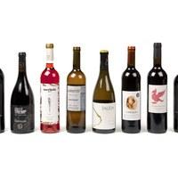 foto vins.jpg